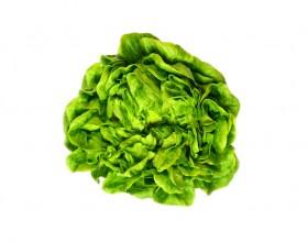 Salanova verde